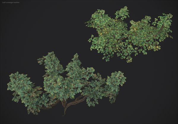 LeafCoverageMeshes05.jpg